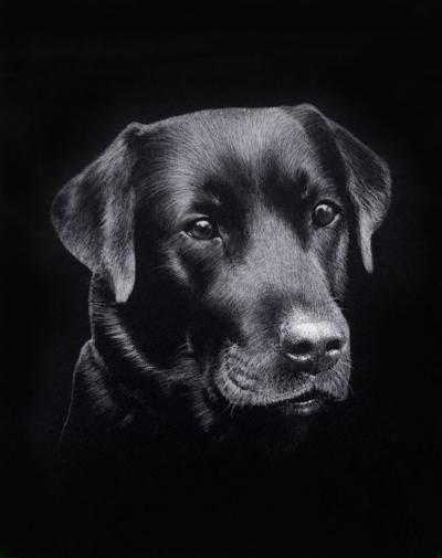 Hunden visste at den skulle dø