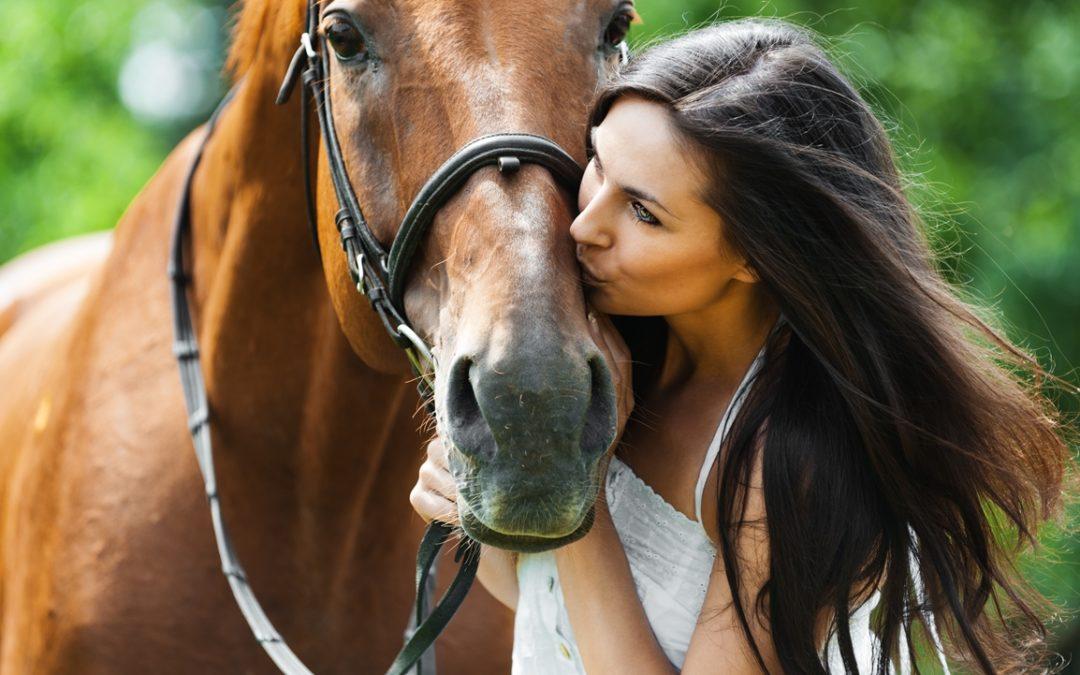 Kan du komme på stallen og snakke med hestene våre?
