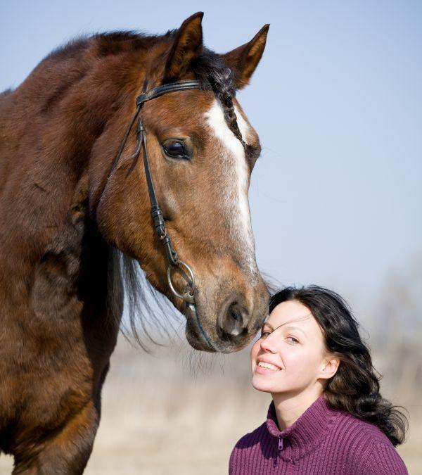 Hesten gav healing