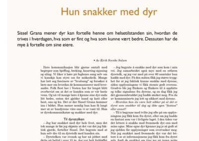 Bladet VISJON Nr.2 2006