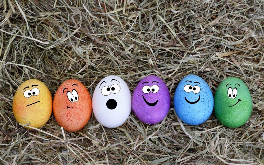 Samma det vel, egg er egg… NEI! Vær så snill, kjøp økologiske egg for hønenes skyld…