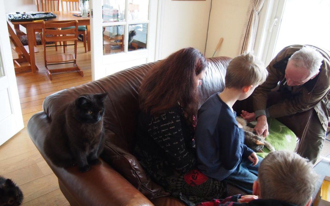 Bør barn være tilstede når dyr avlives?