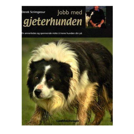 jobb med gjeterhunden