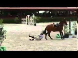 sparket i hode av hest